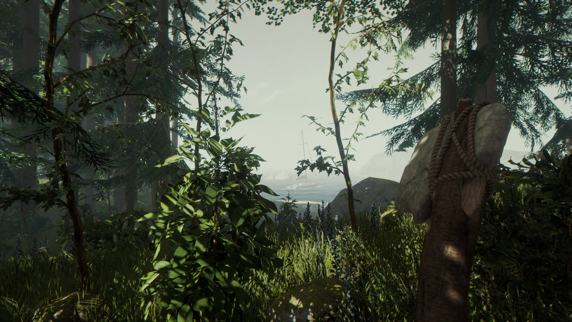 the forest spielen