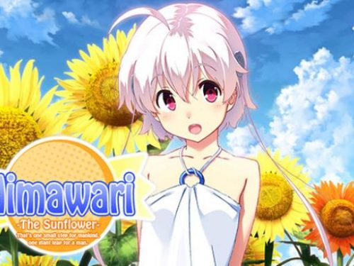 Himawari – The Sunflower