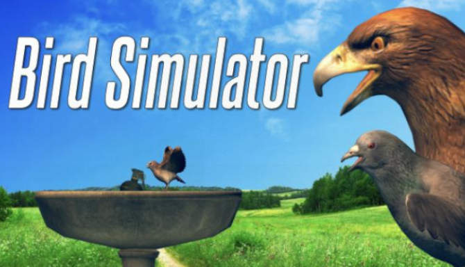 Bird Simulator free