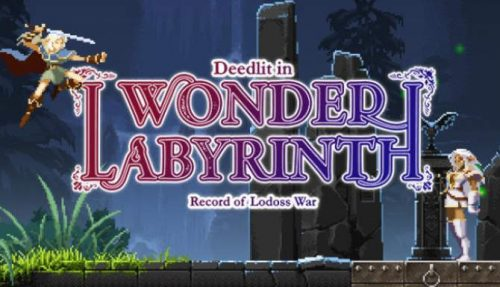 Record of Lodoss War Deedlit in Wonder Labyrinth free